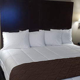 one guest bed room